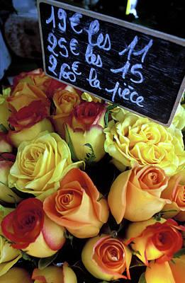 Paris Roses Art Print by Kathy Yates