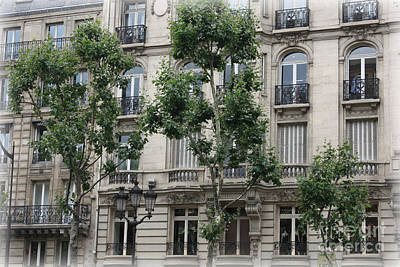 Photograph - Paris Trees And Balconies by Carol Groenen