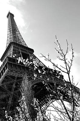 Photograph - Parisian Springtime With Flowers Blooming Beneath The Eiffel Tower In Paris France Black And White by Shawn O'Brien