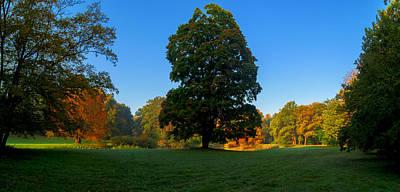 Photograph - Park Autumn Landscape by Sun Travels