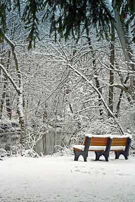 Photograph - Park Bench Along The Pike River by Kay Novy
