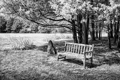 Park Benches Photograph - Park Bench by James Barber