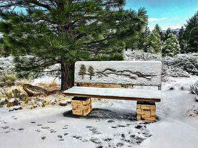 Photograph - Park Bench by Maria Coulson