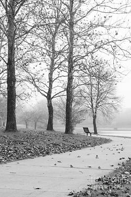Photograph - Park Bench On A Foggy Morning by Tamara Becker