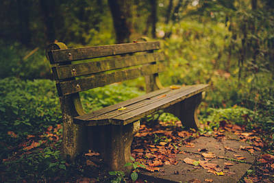 Park Benches Photograph - Park Bench by Shane Holsclaw