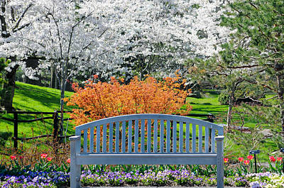 Photograph - Park Bench by Steve Stuller