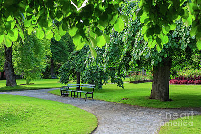 Photograph - Park Bench by Verena Matthew