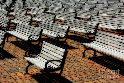 Park Benches Art Print by Perry Webster