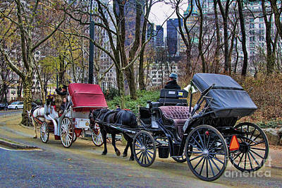 Park Carriage  Art Print by Chuck Kuhn
