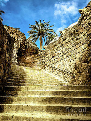 Photograph - Park Guell Stairway by Colleen Kammerer