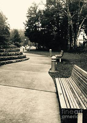 Photograph - Park I, Tn. by Robin Lewis