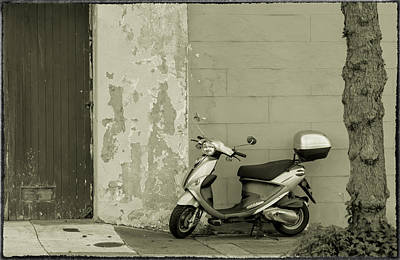 Photograph - Park by Jonathan Nguyen