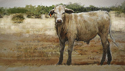 Steer Mixed Media - Park Link Steer by William Beauchamp