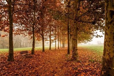 Landscape Digital Art - Park by Maye Loeser