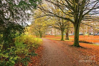 Photograph - Park  by Patricia Hofmeester