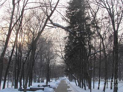 Photograph - Park Perspective by Anna Yurasovsky