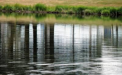 Photograph - Park Reflections by L Cecka