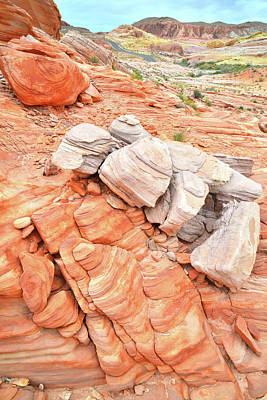 Photograph - Park Road Sandstone In Valley Of Fire by Ray Mathis