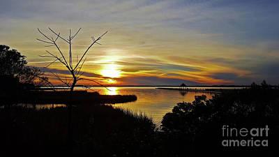 Photograph - Park Sunset 1 by Patti Whitten