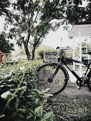 Photograph - Parked Bicycle Into Bush by Sirikorn Techatraibhop