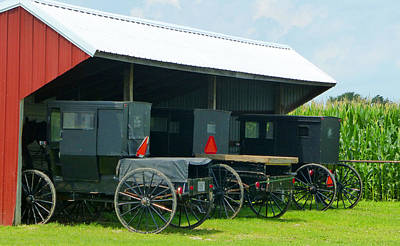 Amish Community Photograph - Parked Buggies by Tina M Wenger