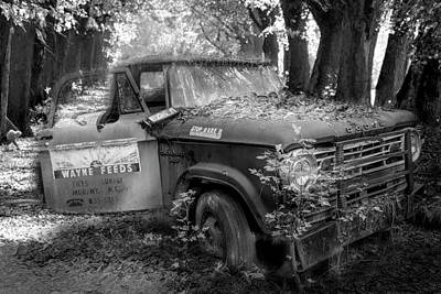 Photograph - Parked On A Country Road In Black And White by Debra and Dave Vanderlaan