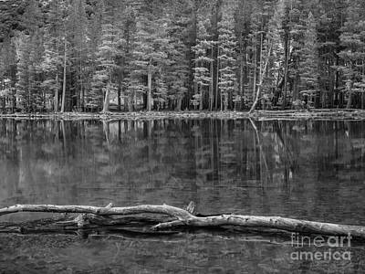 Photograph - Parker Lake Reflection by Alexander Kunz