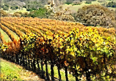 Vineyard Digital Art - Parker Vineyard by Patricia Stalter