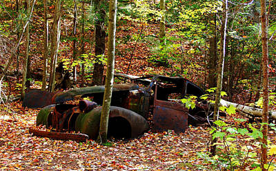 Photograph - Parking In The Forest by Debbie Oppermann