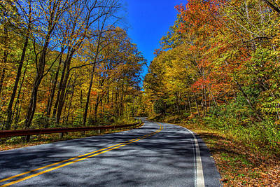 Gold Pattern - Parkway Road NC by Gestalt Imagery