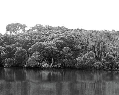 Photograph - Parramatta No. 97-1 by Sandy Taylor