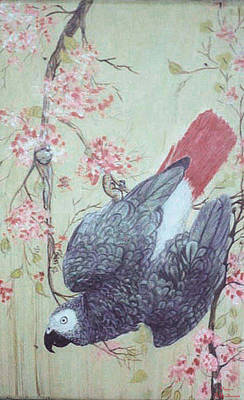African Gray Painting - Parrot And Pink Flowers by Maureen Heidtmann