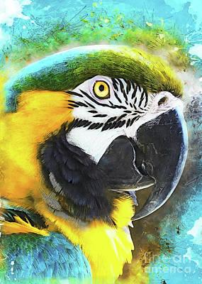 Animals Digital Art - Parrot Ara by Justyna Jaszke JBJart
