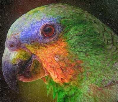 Digital Art - Parrot Art by Yury Malkov