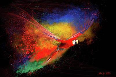 Photograph - Parrot Colors by Lilia D
