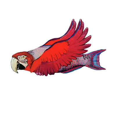 Merging Drawing - Parrot-fish by Mone Ehlers