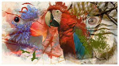 Photograph - Parrot Love by Davina Washington
