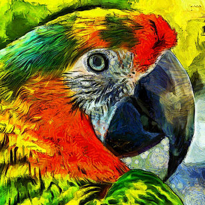 Macaw Mixed Media - Parrot by Stacey Chiew