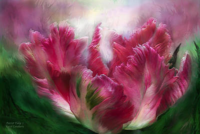 Mixed Media - Parrot Tulip 2 by Carol Cavalaris
