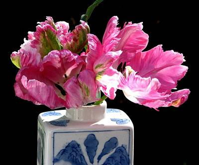 Photograph - Parrot Tulips On The Windowsill by Angela Davies