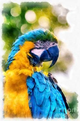 Parrot Watercolor Art Print by Edward Fielding