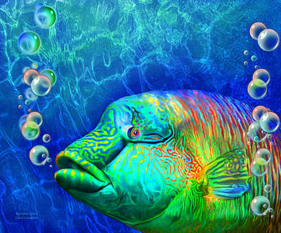 Sea Creatures Mixed Media - Parrotfish - Rainbow Spirit by Carol Cavalaris