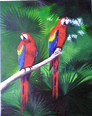 Parrots Molly And Polly Art Print