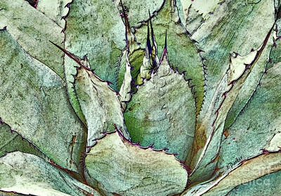 Parry Agave Art Print by Linda Parker