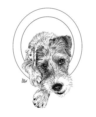 Digital Art - Parson Russell Terrier @elmo.parson by ZileArt
