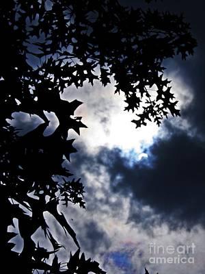 Photograph - Partial Eclipse On Bennett Avenue  by Sarah Loft
