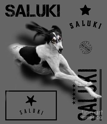 The Rolling Stones Royalty Free Images - Particolour Saluki No 03 Royalty-Free Image by Mia Stedt