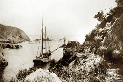 Photograph - Partington Cove On The Big Sur Coast Circa 1903 by California Views Mr Pat Hathaway Archives