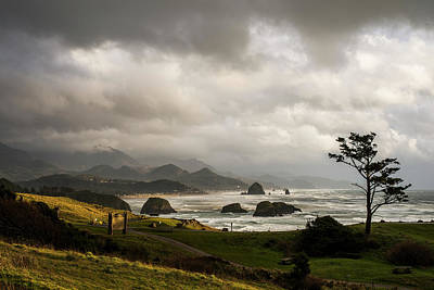 Photograph - Partly Cloudy by Robert Potts