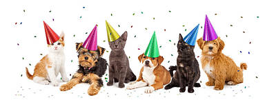 Party Puppies And Kittens With Confetti Art Print by Susan Schmitz